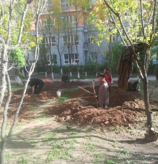 园林2.jpg